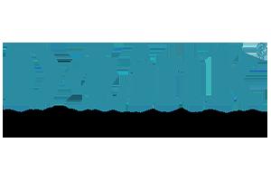 D Link Logo